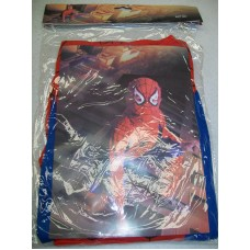 BOYS COSTUME SPIDERMAN